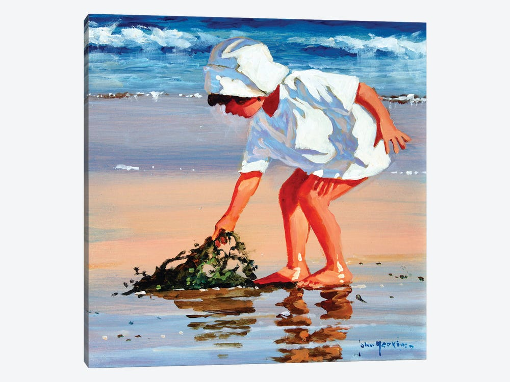 Serious About Seaweed Square by John Haskins 1-piece Canvas Wall Art