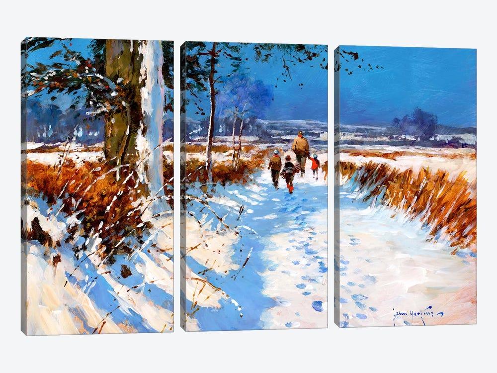 Snow On The Bridleway by John Haskins 3-piece Art Print