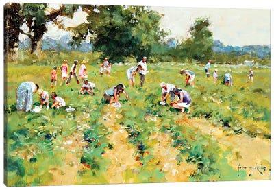 Strawberry Pickers Canvas Art Print
