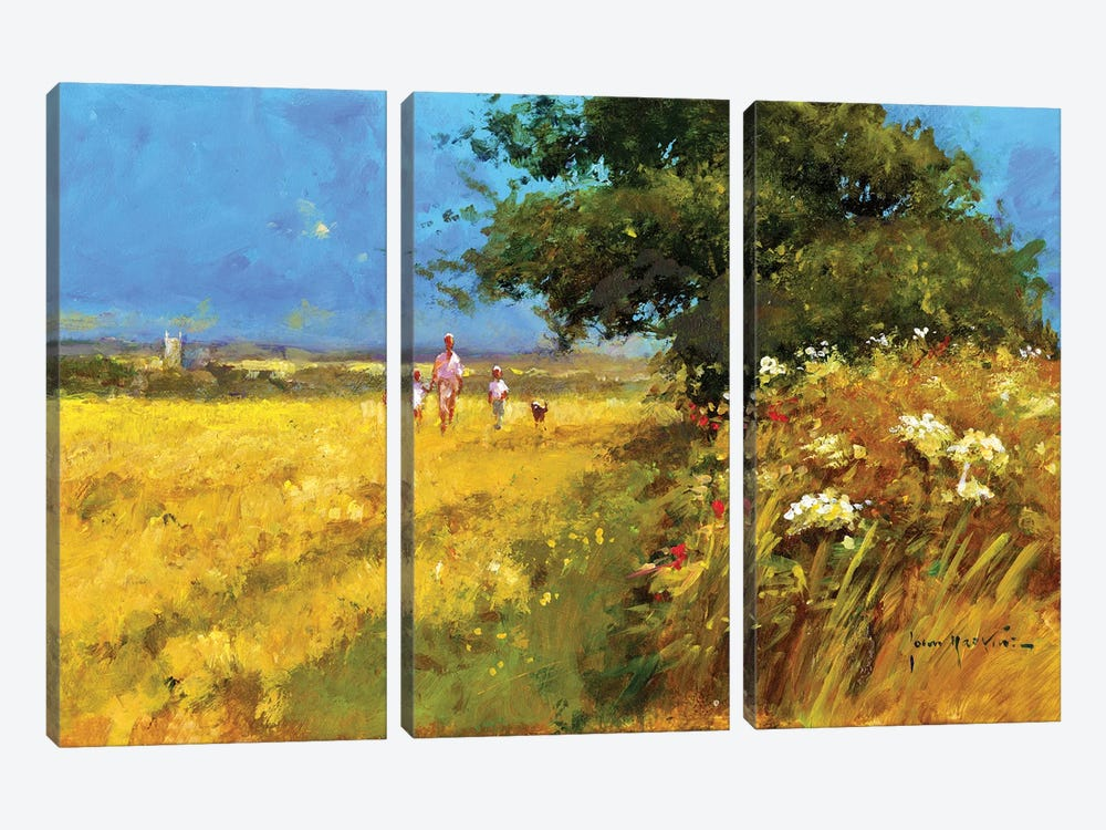 A Walk In The Field by John Haskins 3-piece Canvas Artwork
