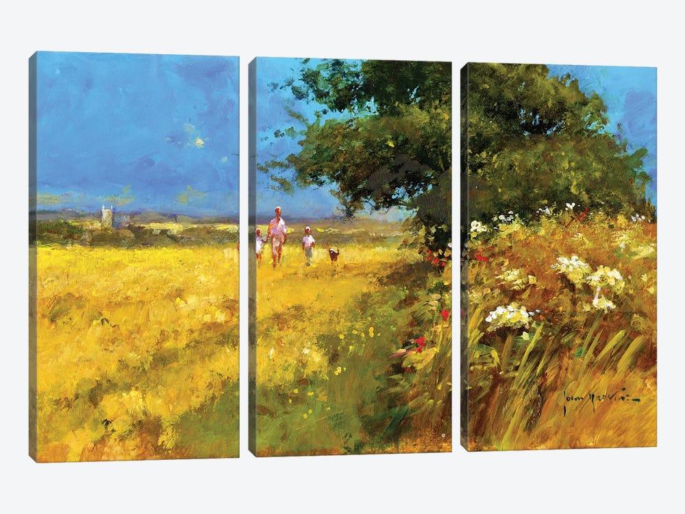 A Walk In The Field by John Haskins 3-piece Canvas Artwork
