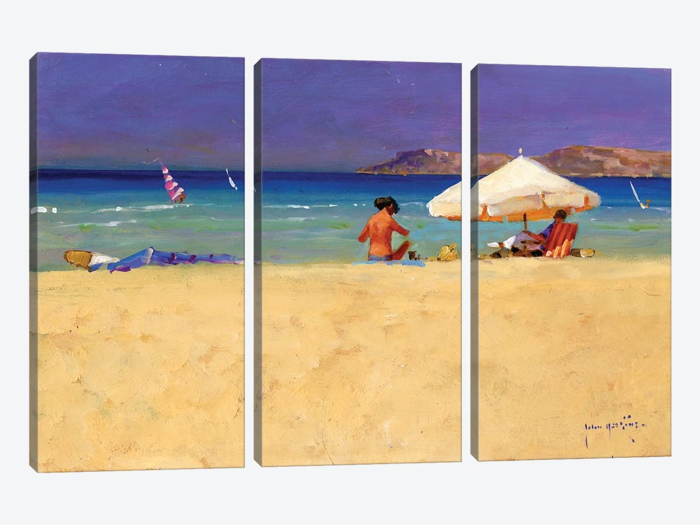 Eighty Degrees In The Shade by John Haskins 3-piece Art Print