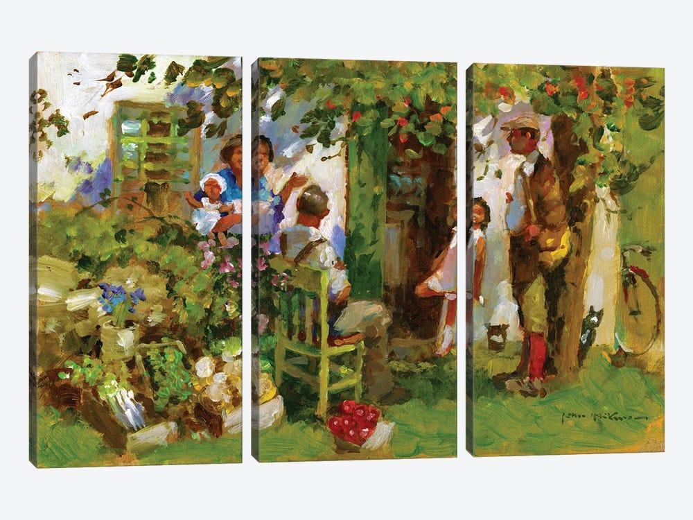 Family Gathering by John Haskins 3-piece Canvas Art