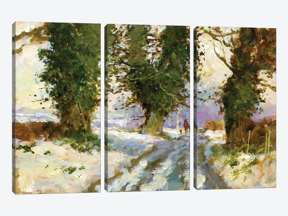 Snow In The Lane (Cardington) by John Haskins 3-piece Canvas Wall Art