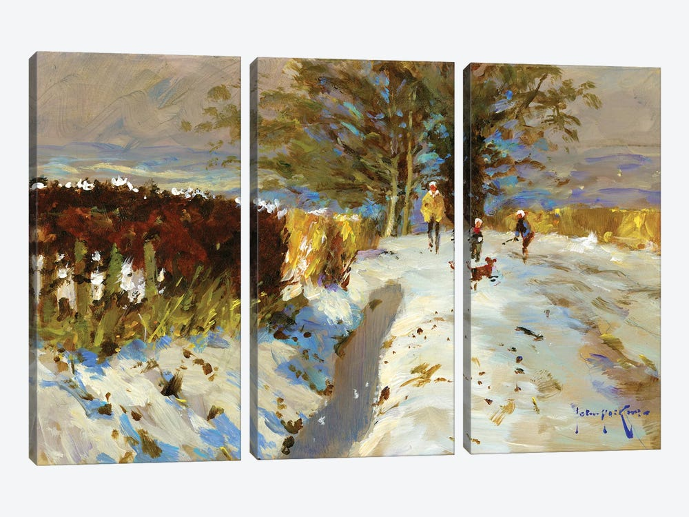 Snow On The Back Lane by John Haskins 3-piece Canvas Print
