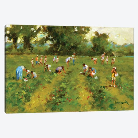 Summer Strawberry Picking Canvas Print #JHS83} by John Haskins Canvas Art