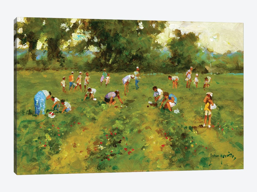 Summer Strawberry Picking by John Haskins 1-piece Canvas Art