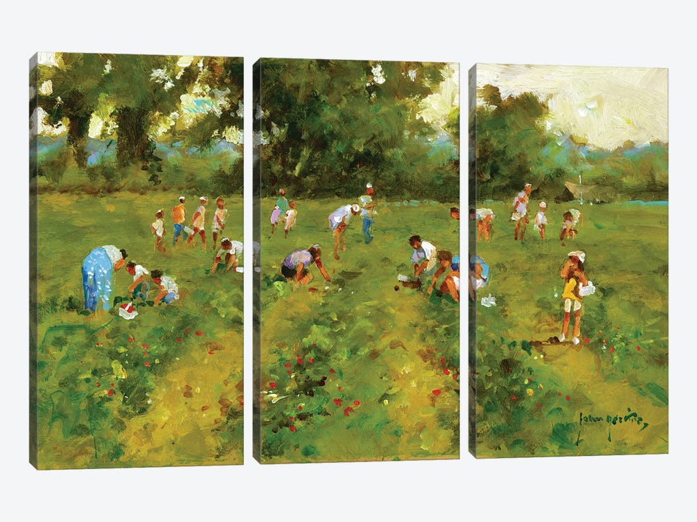 Summer Strawberry Picking by John Haskins 3-piece Canvas Artwork