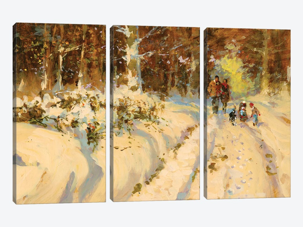 Sunshine And Snow A Walk In The Woods by John Haskins 3-piece Art Print