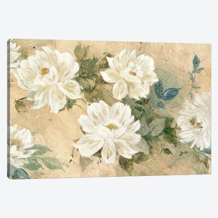 White Petals Canvas Print #JIL3} by Jil Wilcox Canvas Wall Art