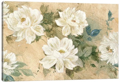 White Petals Canvas Art Print