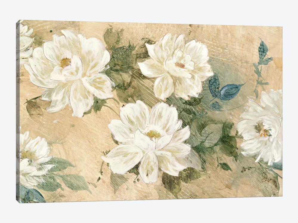 White Petals by Jil Wilcox 1-piece Canvas Print
