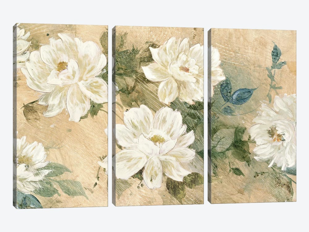 White Petals by Jil Wilcox 3-piece Canvas Art Print