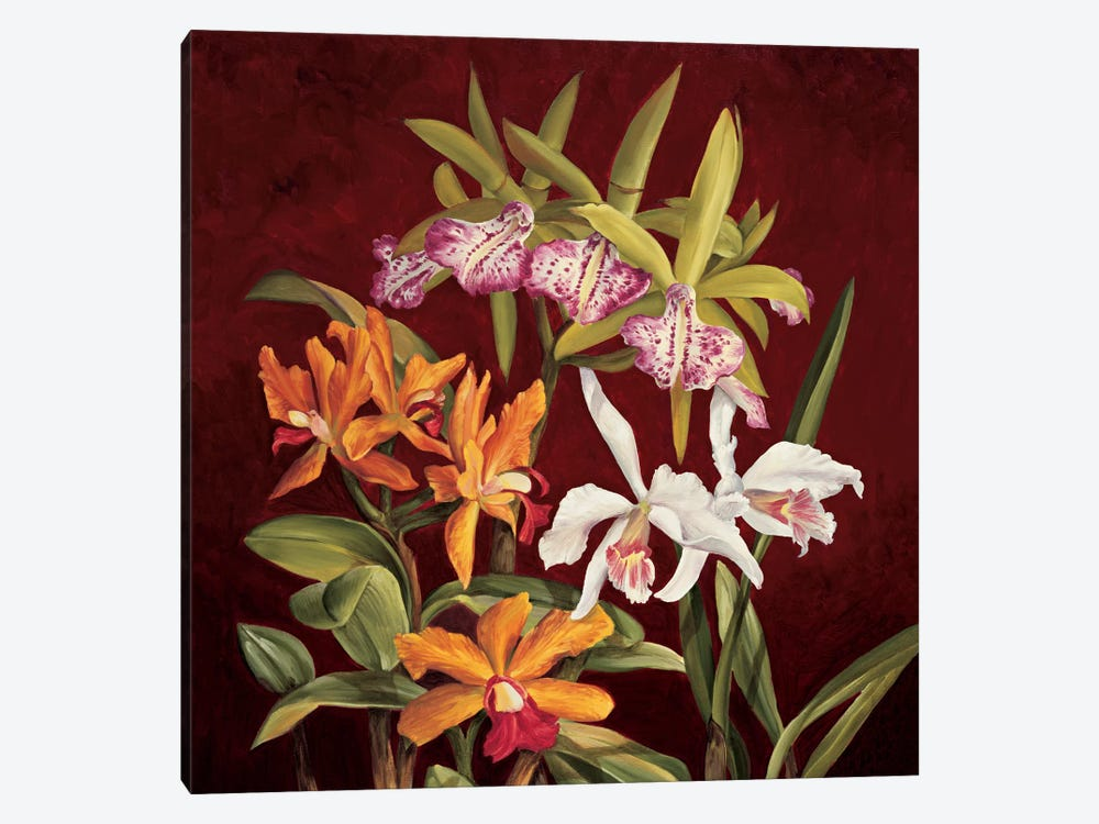 Orchid Trio II by Rodolfo Jimenez 1-piece Canvas Art