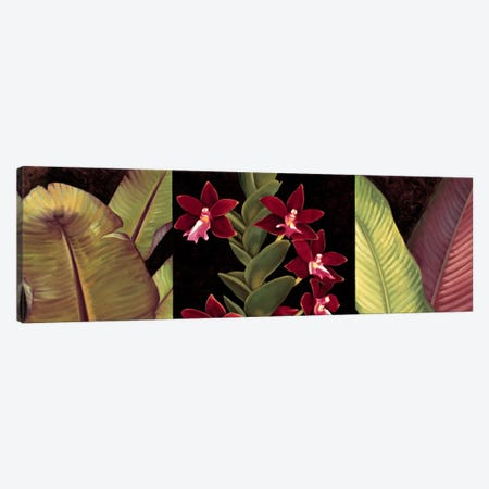 Red Orchids And Palm Leaves Canvas Print #JIM14} by Rodolfo Jimenez Canvas Print