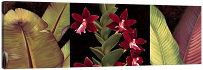 Red Orchids And Palm Leaves Canvas Art Print