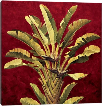 Traveler's Palm Canvas Art Print