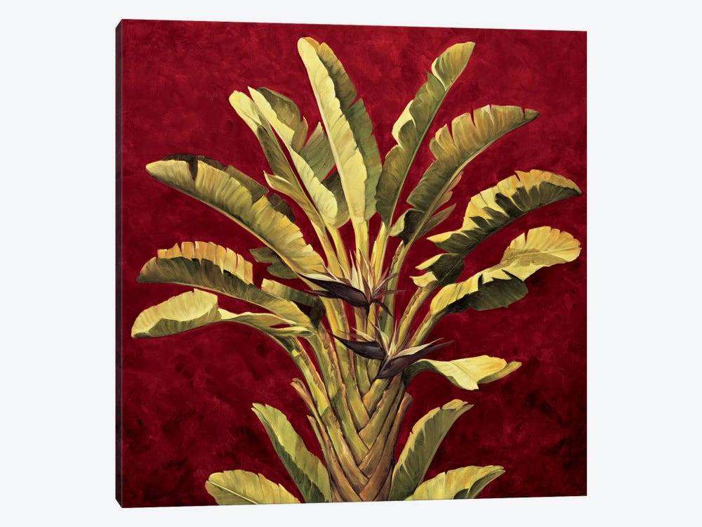 Traveler's Palm by Rodolfo Jimenez 1-piece Art Print