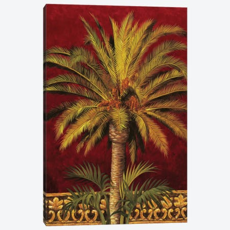 Canary Palm Canvas Print #JIM3} by Rodolfo Jimenez Art Print