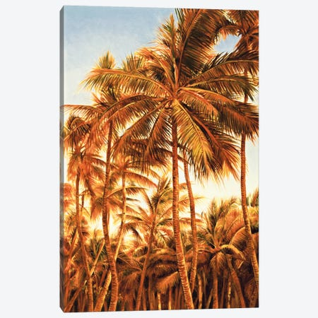 Island Sunset I Canvas Print #JIM6} by Rodolfo Jimenez Canvas Artwork