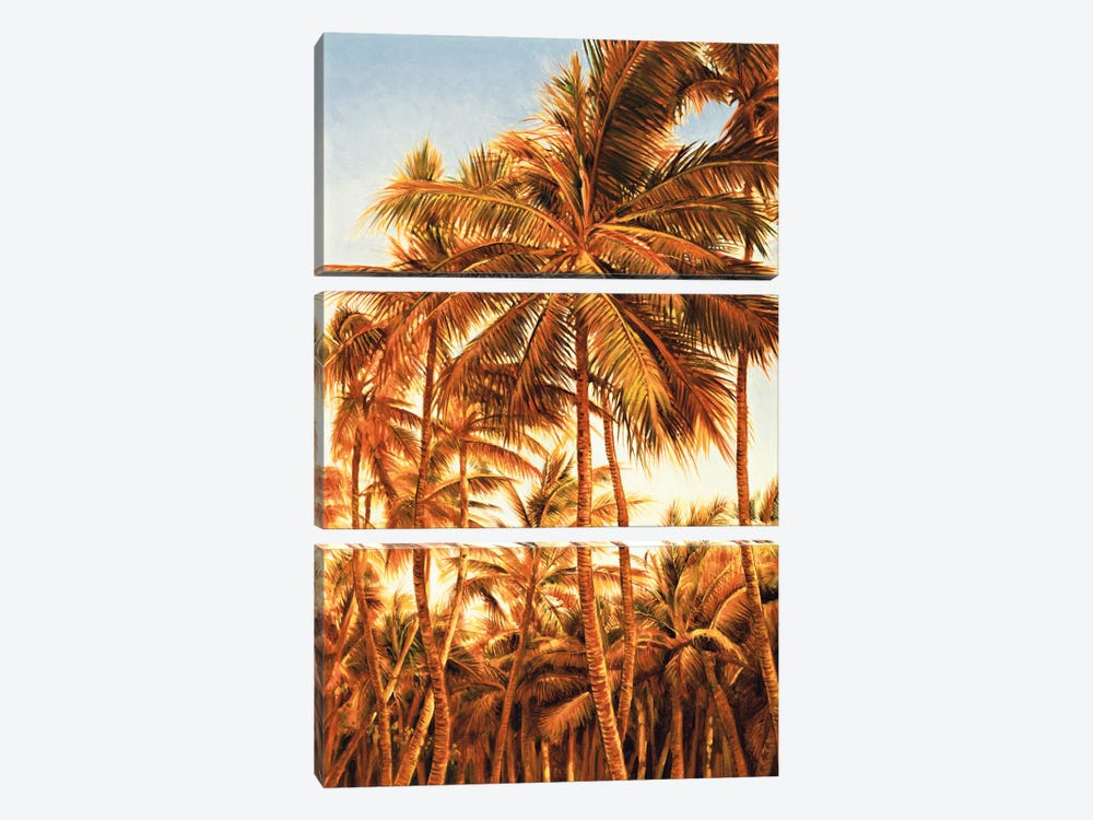 Island Sunset I by Rodolfo Jimenez 3-piece Canvas Art Print