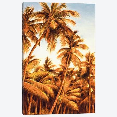 Island Sunset II Canvas Print #JIM7} by Rodolfo Jimenez Canvas Art