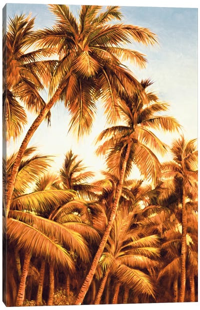 Island Sunset II Canvas Print #JIM7