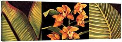 Orange Orchids And Palm Leaves Canvas Print #JIM8