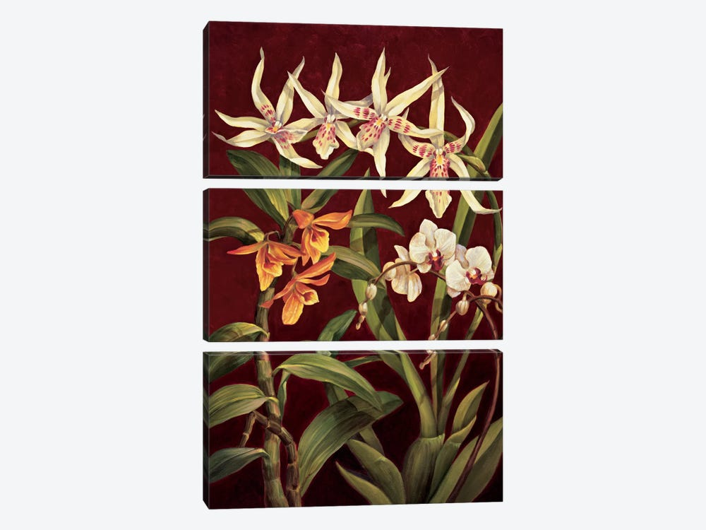 Orchid Trio I by Rodolfo Jimenez 3-piece Canvas Artwork