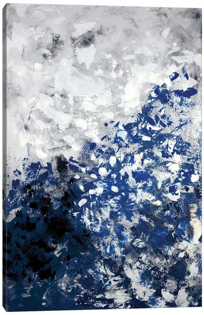 Skyward Canvas Art Print