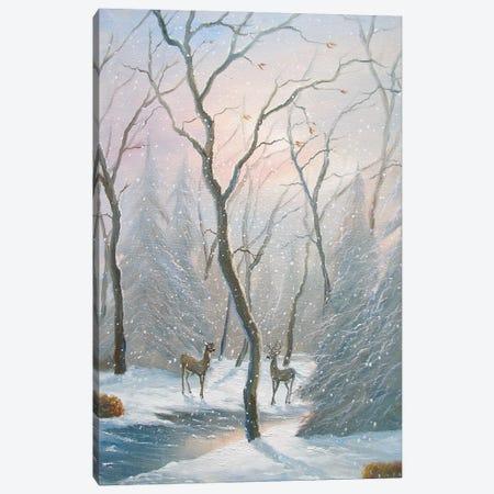 Misty Forest Deer Canvas Print #JIW21} by Jim Williams Canvas Art Print