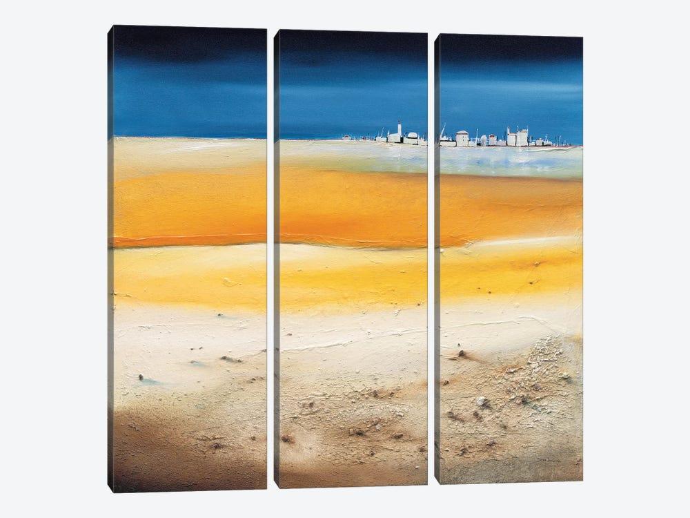 Imagination II by Jean Jauneau 3-piece Canvas Art Print