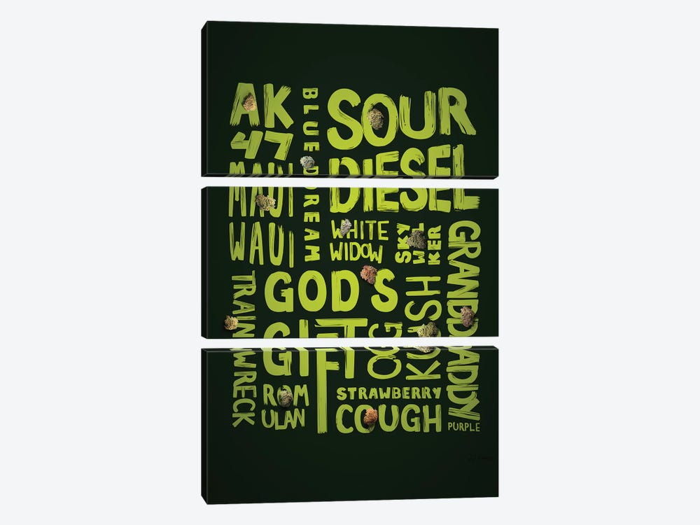 Green Words by JJ Brando 3-piece Canvas Art Print