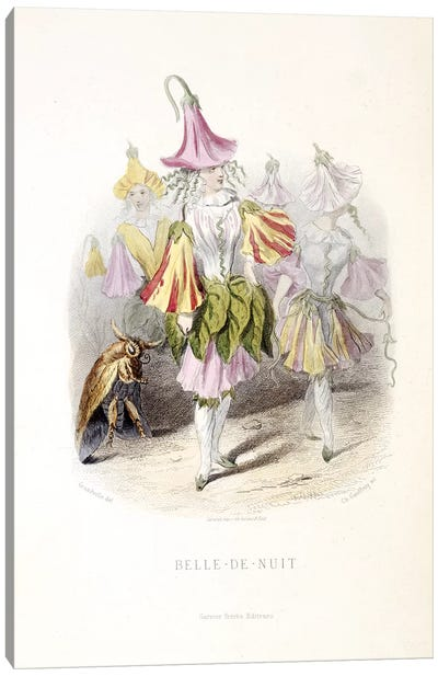 Grandville's Flowers Personified Series: Marvel Of Peru (Belle de Nuit) Canvas Print #JJG4