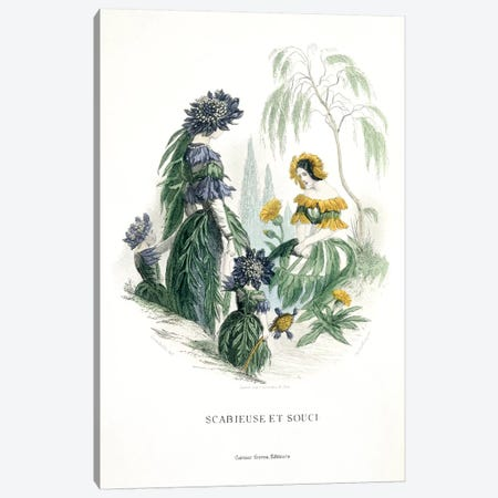 Mourning Bride & Marigold (Scabieuse et Souci) Canvas Print #JJG5} by J.J. Grandville Canvas Art Print