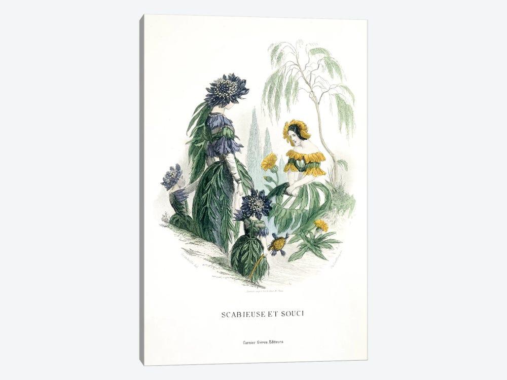 Mourning Bride & Marigold (Scabieuse et Souci) by J.J. Grandville 1-piece Canvas Artwork