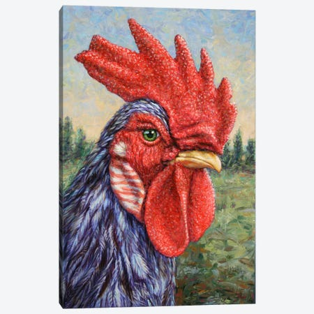 Blue Rooster Canvas Print #JJN10} by James W. Johnson Canvas Art Print