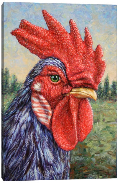 Blue Rooster Canvas Print #JJN10