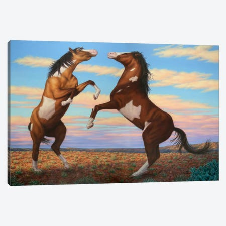 Boxing Horses Canvas Print #JJN11} by James W. Johnson Canvas Print