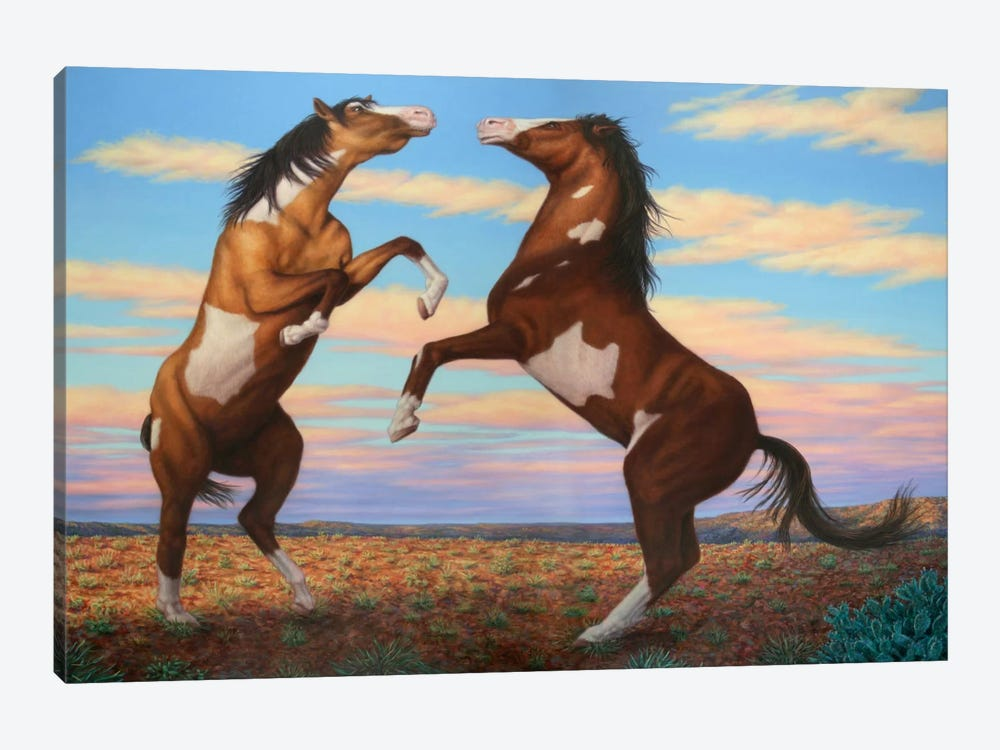 Boxing Horses by James W. Johnson 1-piece Canvas Art Print