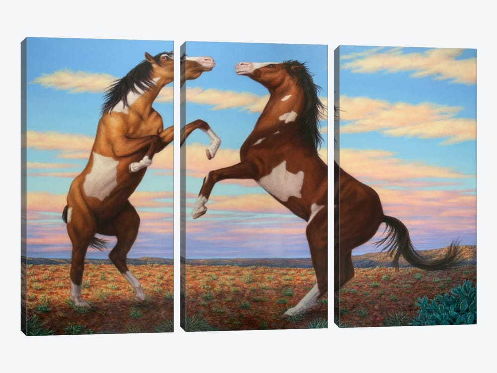 Boxing Horses by James W. Johnson 3-piece Canvas Art Print