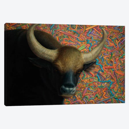 Bull Canvas Print #JJN12} by James W. Johnson Art Print