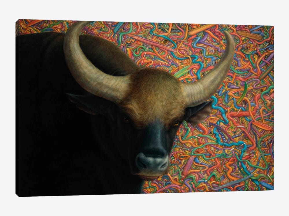 Bull by James W. Johnson 1-piece Canvas Artwork