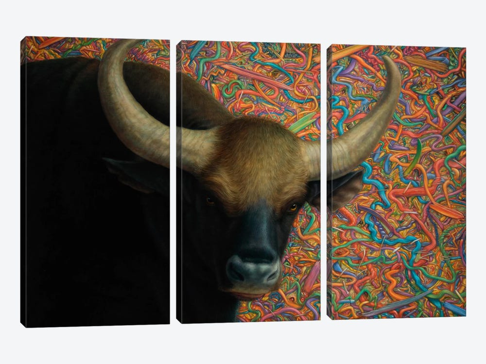 Bull by James W. Johnson 3-piece Canvas Art