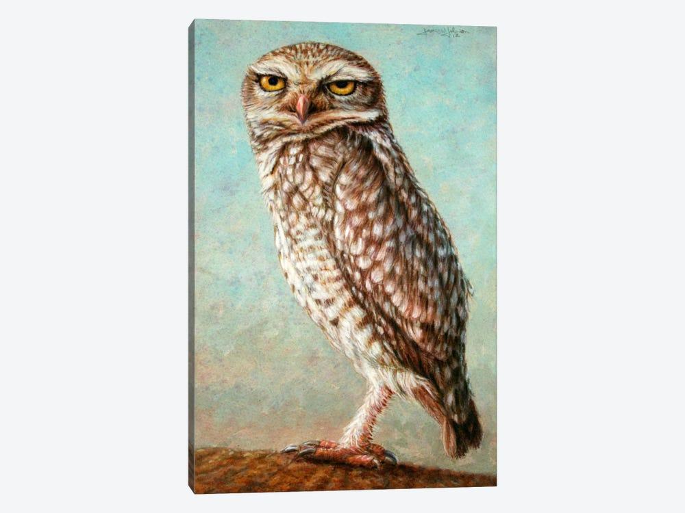 Burrowing Owl by James W. Johnson 1-piece Art Print