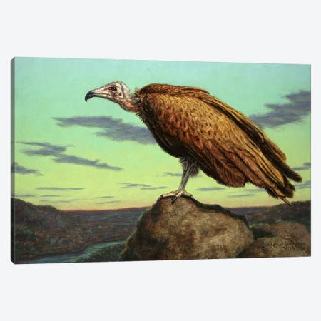 Buzzard Rock Canvas Print #JJN14} by James W. Johnson Canvas Artwork