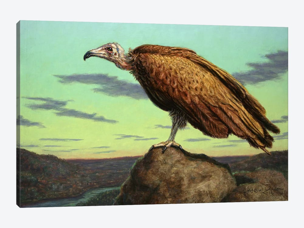 Buzzard Rock by James W. Johnson 1-piece Canvas Artwork