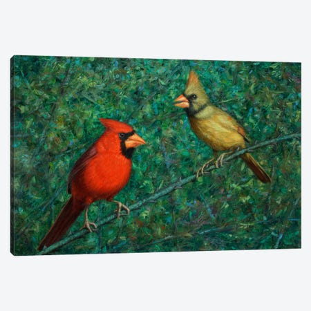 Cardinal Couple Canvas Print #JJN15} by James W. Johnson Canvas Wall Art