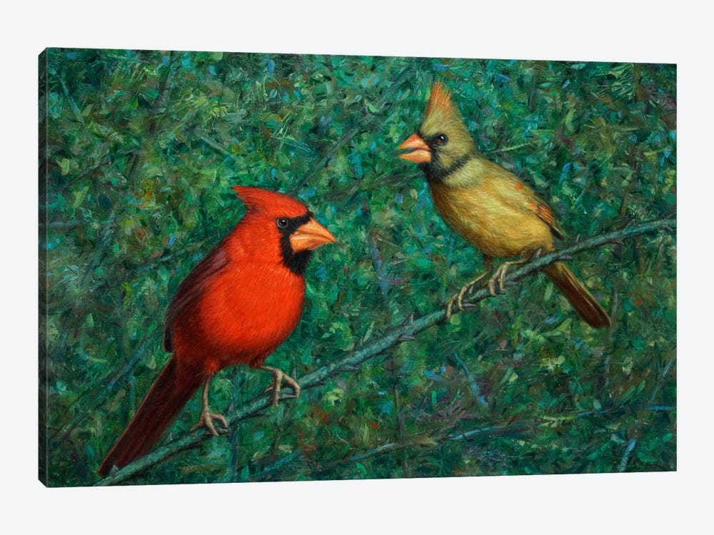 Cardinal Couple by James W. Johnson 1-piece Art Print