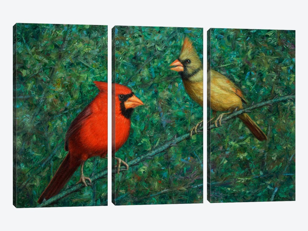 Cardinal Couple by James W. Johnson 3-piece Canvas Print